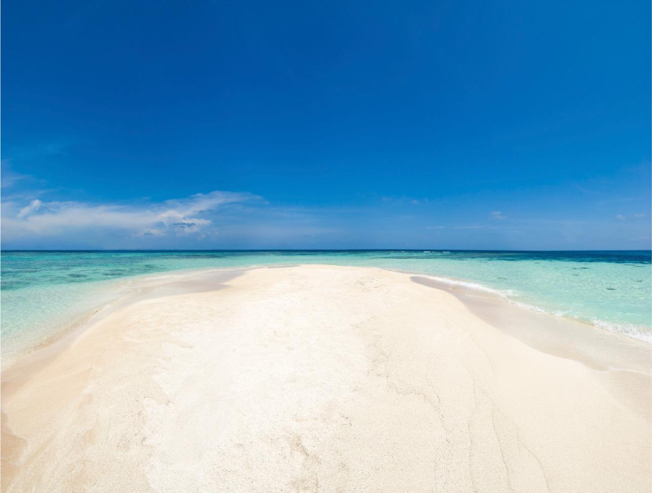 Anna Maria Island Sandy Beach