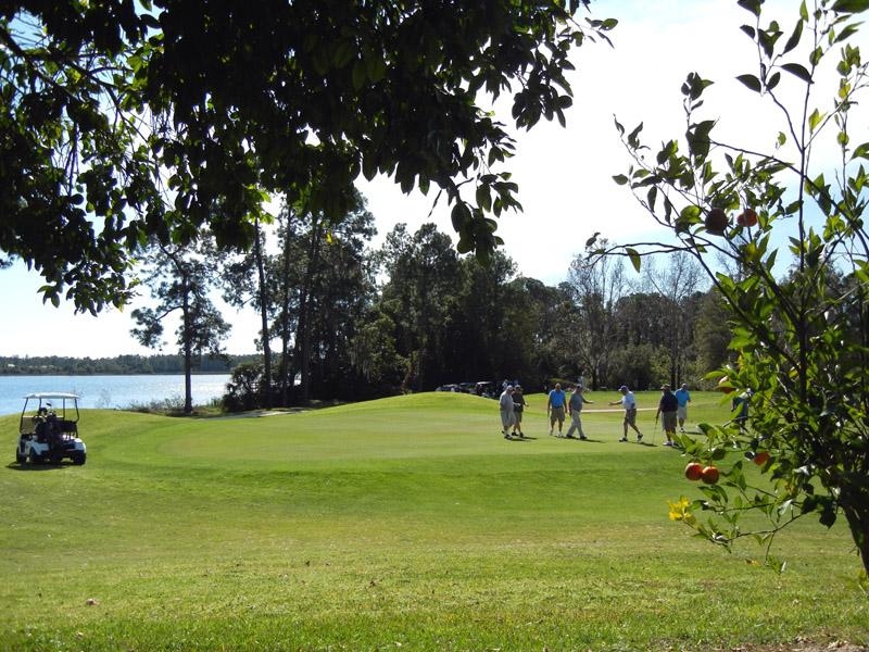Polo Park East Golfing